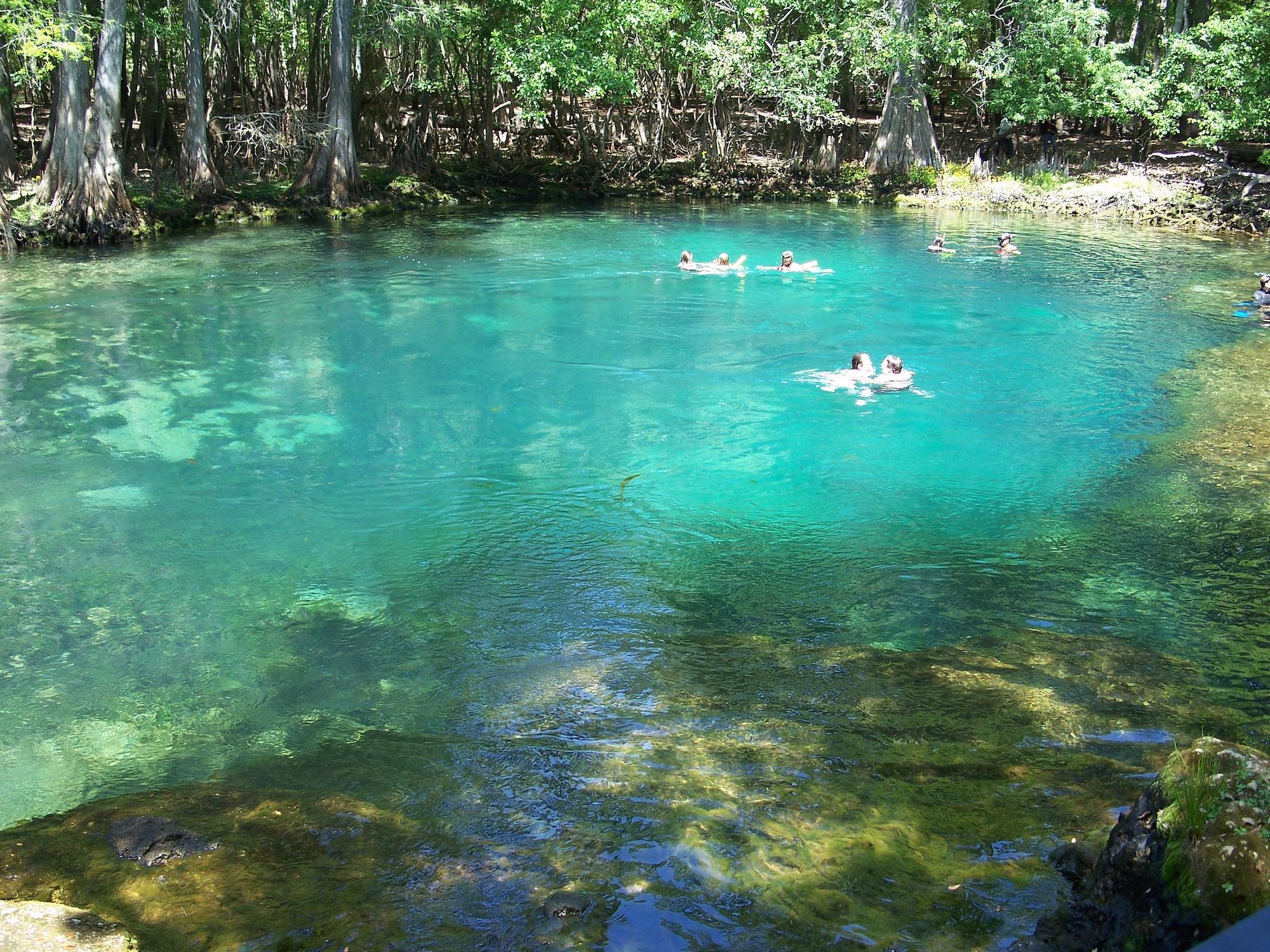 Manatee Springs Florida