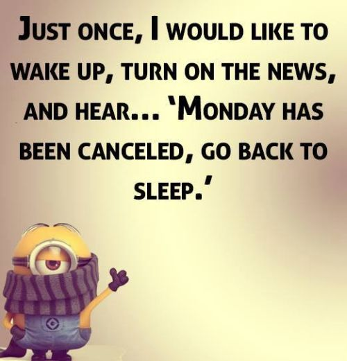 Minion says Monday has been cancelled
