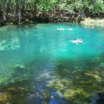 Manatee Springs Florida