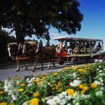 Mackinac Island Carriage