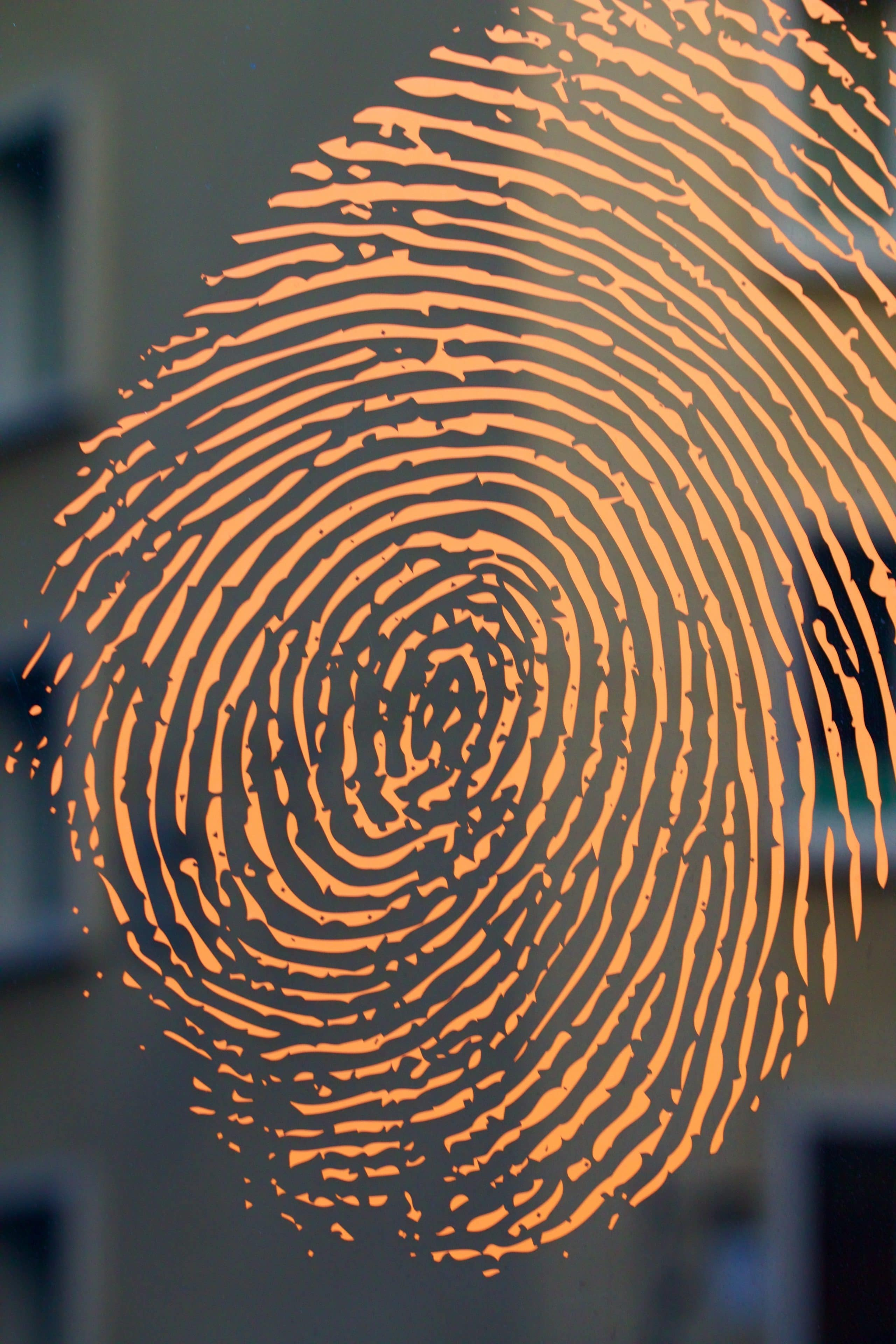 My Friend Has No Fingerprints?!? - Diane Capri - Licensed to Thrill
